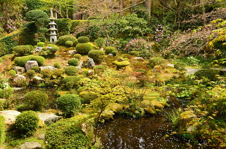 桜散る聚碧園