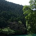 Photos: 090419_白丸ダム周辺_62