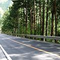 Photos: 090419_白丸ダム周辺_75