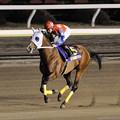 Photos: [140402大井11R東京スプリント]アーリーロブスト「中央馬には負けれられんわ!頑張るわ!」
