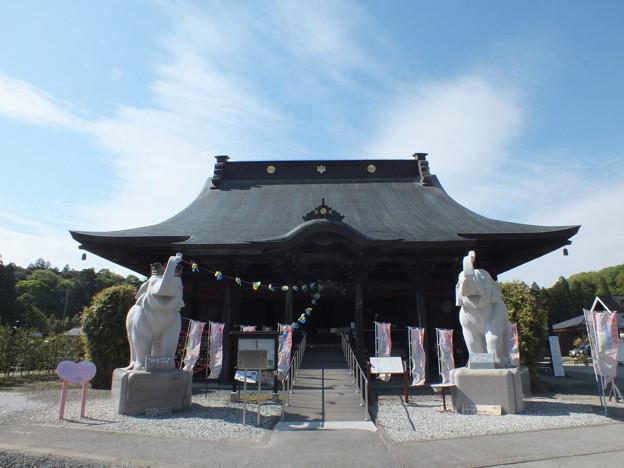 幸福を呼ぶゾウ~長福寿寺