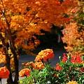30 プリンセスコート館前にて08年10月12日撮影 by ホテルグリーンプラザ軽井沢