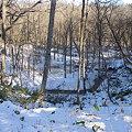 写真: 雪が積もり冬に突入
