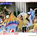 Photos: 勇舞会_彩夏祭2008_23