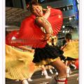 子鳩子兎 横浜百姫隊_東京よさこい2008_01