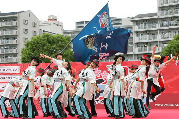 写真: 舞踊工場_荒川よさこい-31