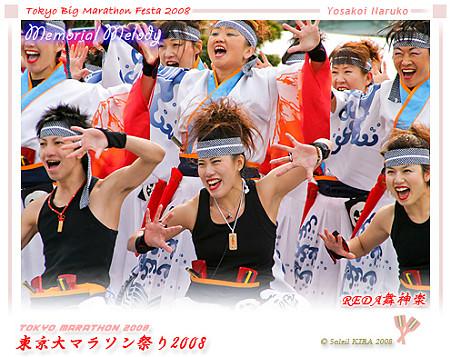 REDA舞神楽_東京大マラソン祭り2008_bf