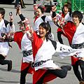 """早稲田大学 """"踊り侍"""" - 東京大マラソン祭り2008"""