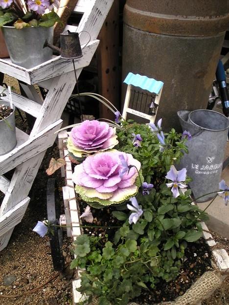 Photos: 1,29花ぐるまにピック