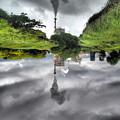 Photos: さかさまの世界