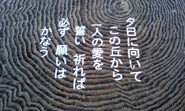 上ノ手展望台(渡名喜島)