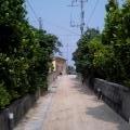 Photos: 渡名喜島集落