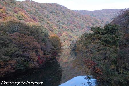 水面に映る紅葉と秋の空