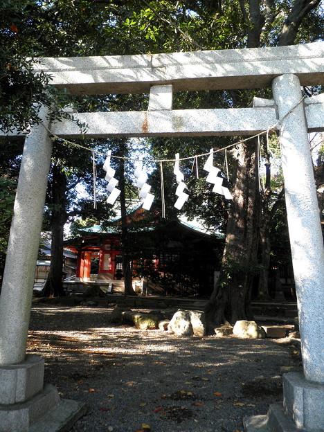 世田谷線:宮の坂駅界隈_世田谷八幡宮-10高良神社a