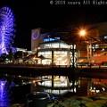 Photos: ドリプラの夜景。