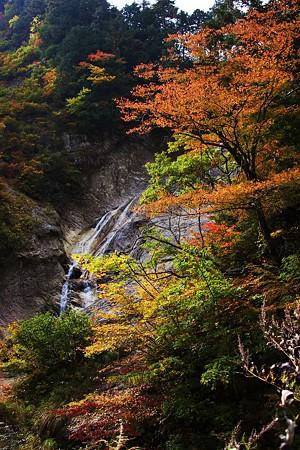 白山スーパー林道 姥が滝