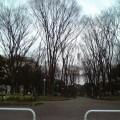 写真: 070329夕暮れのセントラルパーク