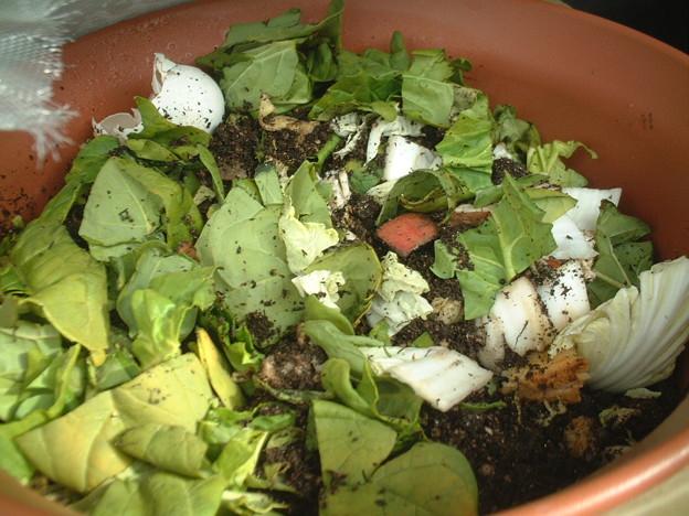Photos: 廃物野菜の入れすぎってば。