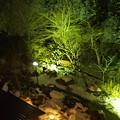Photos: ホテルからの夜景2