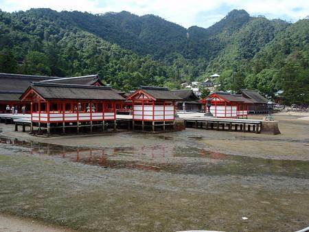 厳島神社の画像 p1_31