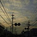 Photos: グラサンが・・・