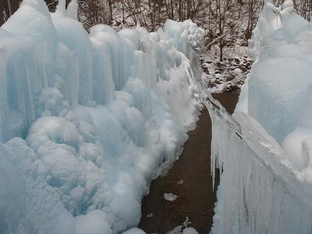 氷の行くて(氷点下の森)