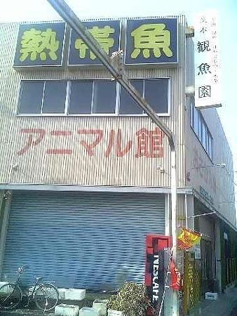 20090412 茨木観魚園
