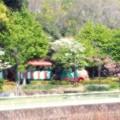 長居植物園04