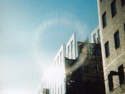写真: マトパラで撮った写真 その一