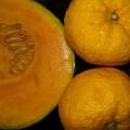 Photos: 冬至に 鹿児島産カボチャと柚子