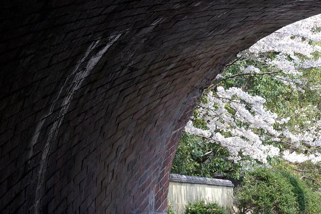 蹴上・・・インクラインの桜 その…40