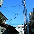 Photos: R0011528.JPG