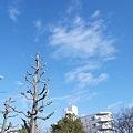 Photos: 1223の空