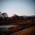 Photos: IMG_0016.JPG