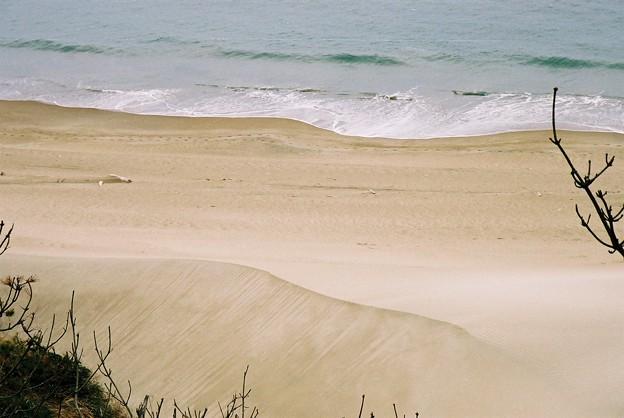 砂丘みたい