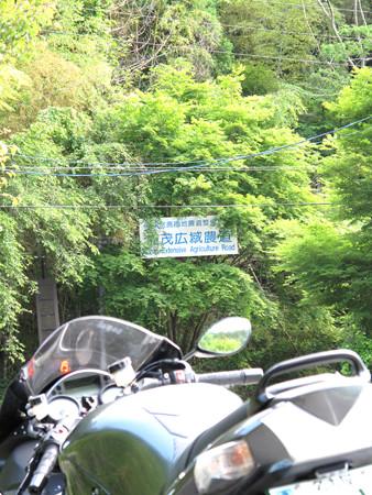 IMG_8042 加茂広域農道南側入口
