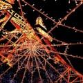 写真: 東京タワー   クリスマスイルミ