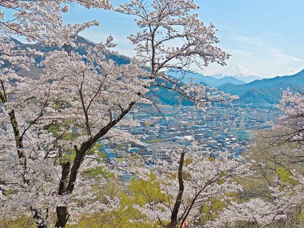 春の富士(2)