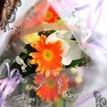 Photos: 10458213_625762200853273_7139126740697937674_n