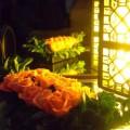 写真: バラと照明