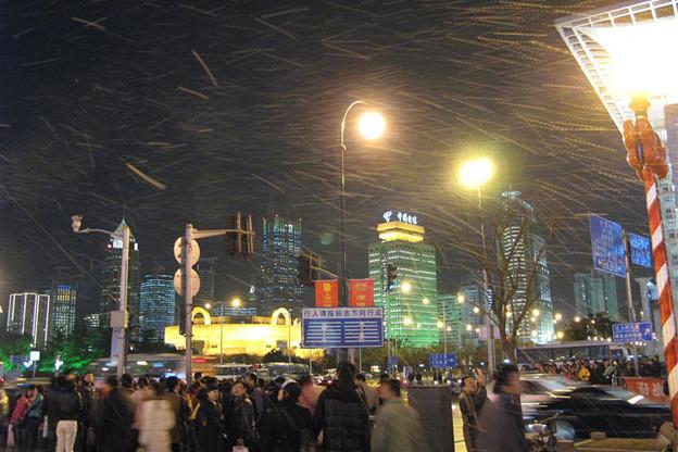 写真: 風に舞い散る様はまるで吹雪