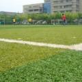 写真: サッカー大会