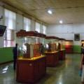 写真: 併設の博物館