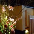 写真: 生け花