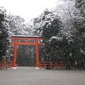 写真: 雪の日の下鴨神社C