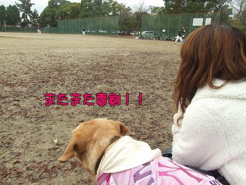 s-myu2008_1214(014)