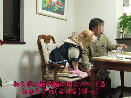 s-myu2008_1223(048)