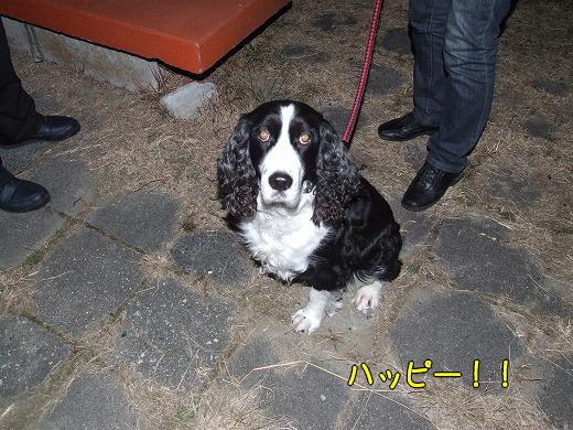 s-myu2008_1230(004)