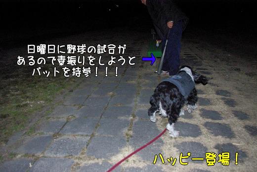 s-myu2009_0219(292)