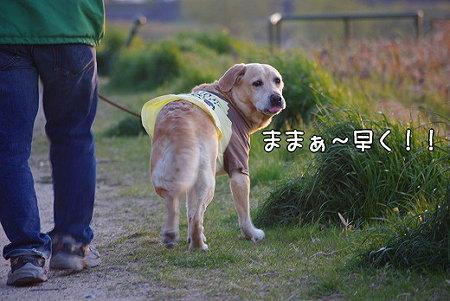 s-myu2009_0328(040)
